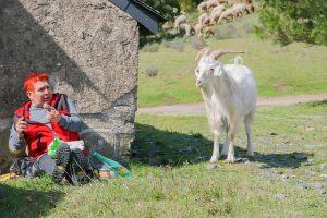 Mujer asustada por una cabra
