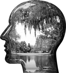 Silueta de una cabeza humana con imágenes dentro