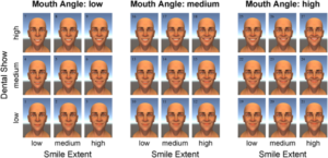 Dynamic properties of successful smiles